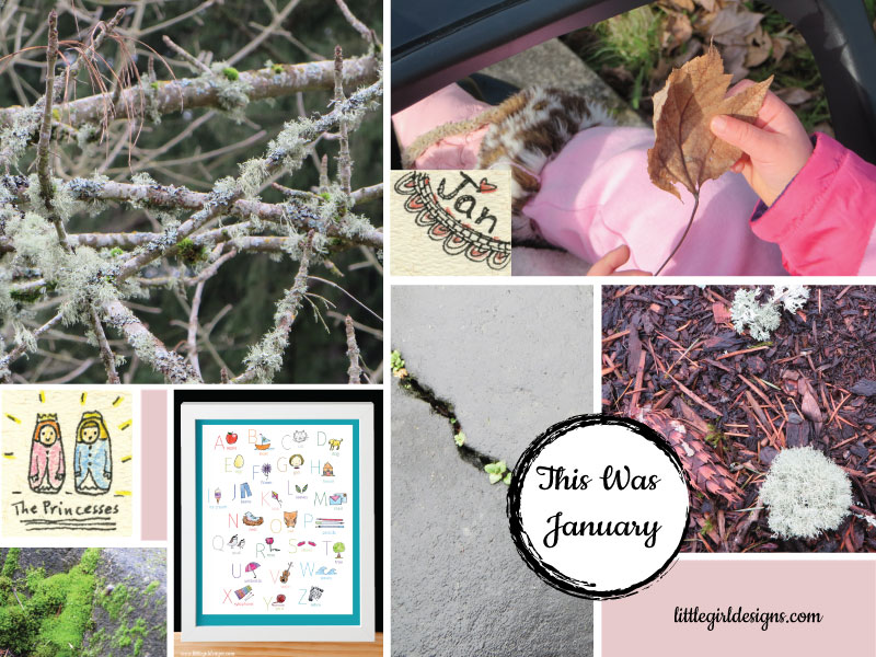 This Was January - my monthly look-back post. Would you like to join me? @littlegirldesigns.com