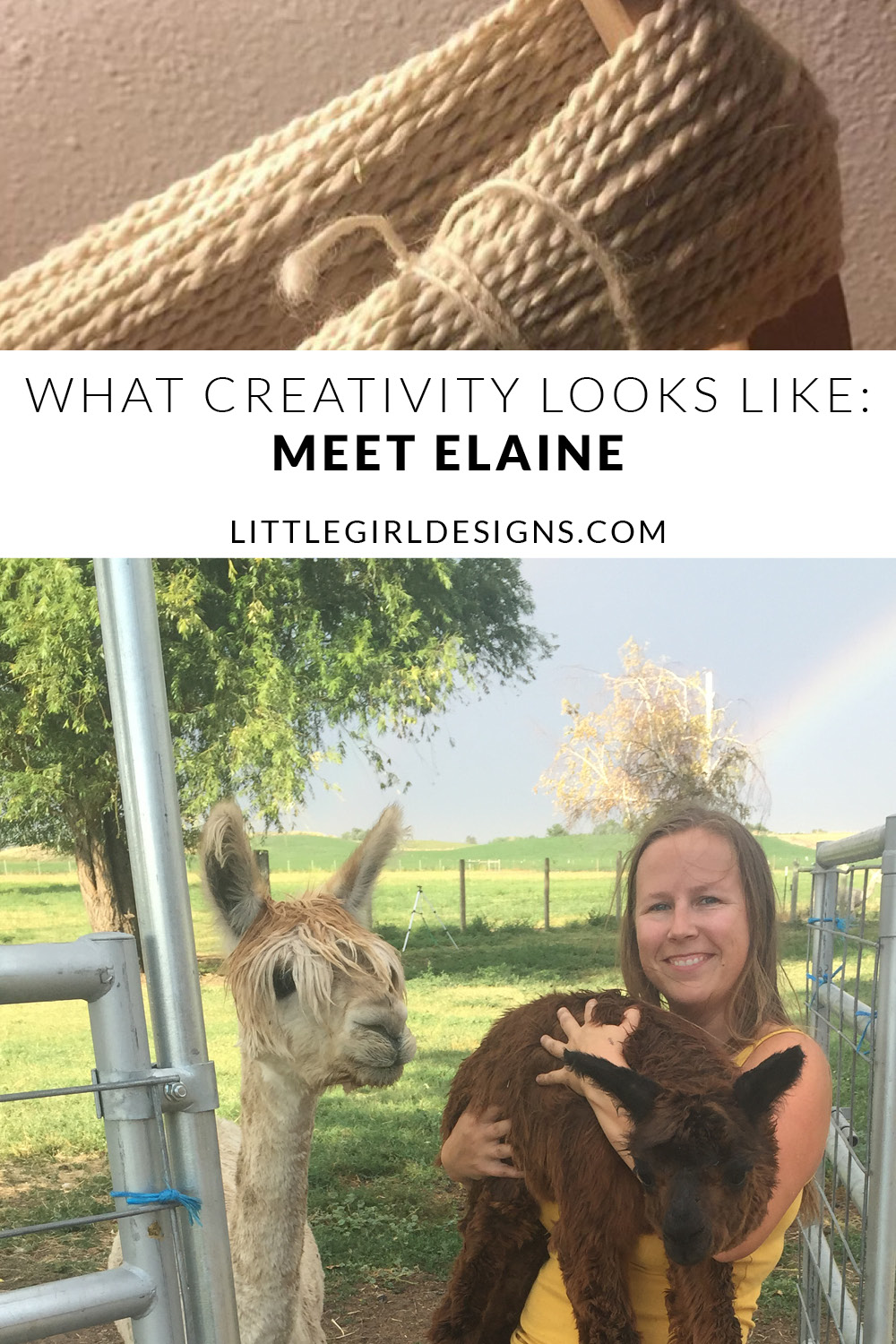 What Creativity Looks Like: Meet Elaine, Owner of Old Homestead Alpacas. She's taking us behind-the-scenes of what it looks like to run an alpaca farm. What an amazing person!